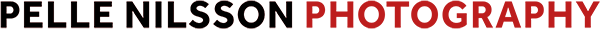 FOTOGRAF PELLE NILSSON Logotyp